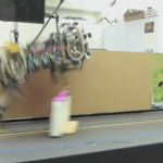 cheetah bot jump